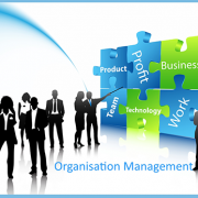 Organisation-Managemen_1434526608